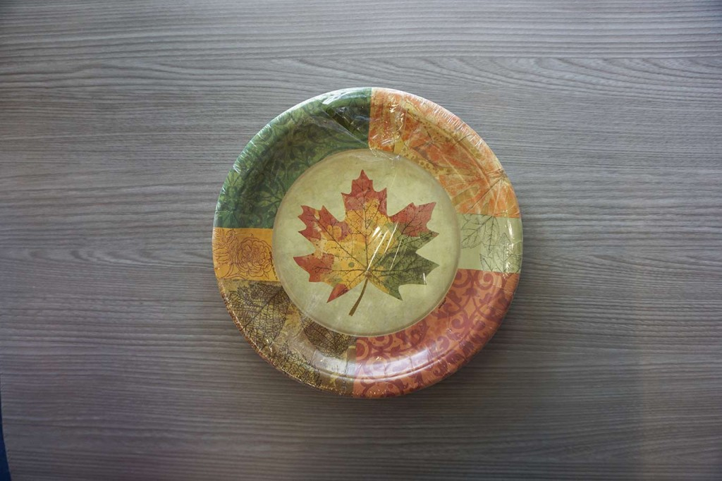 Thanksgiving dinner paper plates